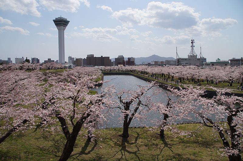 20150425_goryoukaku04.jpg