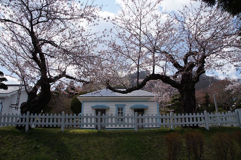 20150425_haisui01.jpg